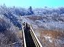 팔공산 하늘공원 설경